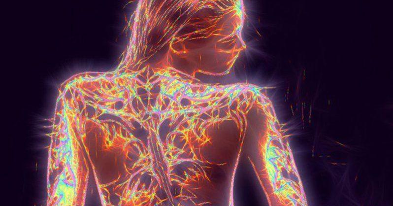 fibromyalgia nerves